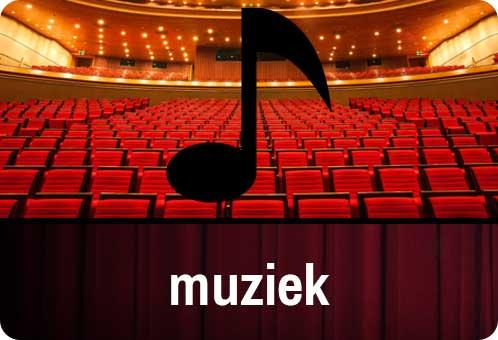 naar muziek