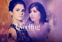 Musical de Tweeling