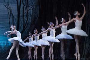Charkov Staats Ballet Theater - Het Zwanenmeer
