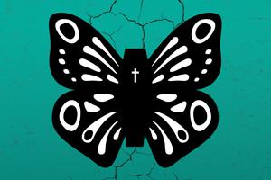 Een vlinder van sneeuw - Een voorstelling door de Veenfabriek